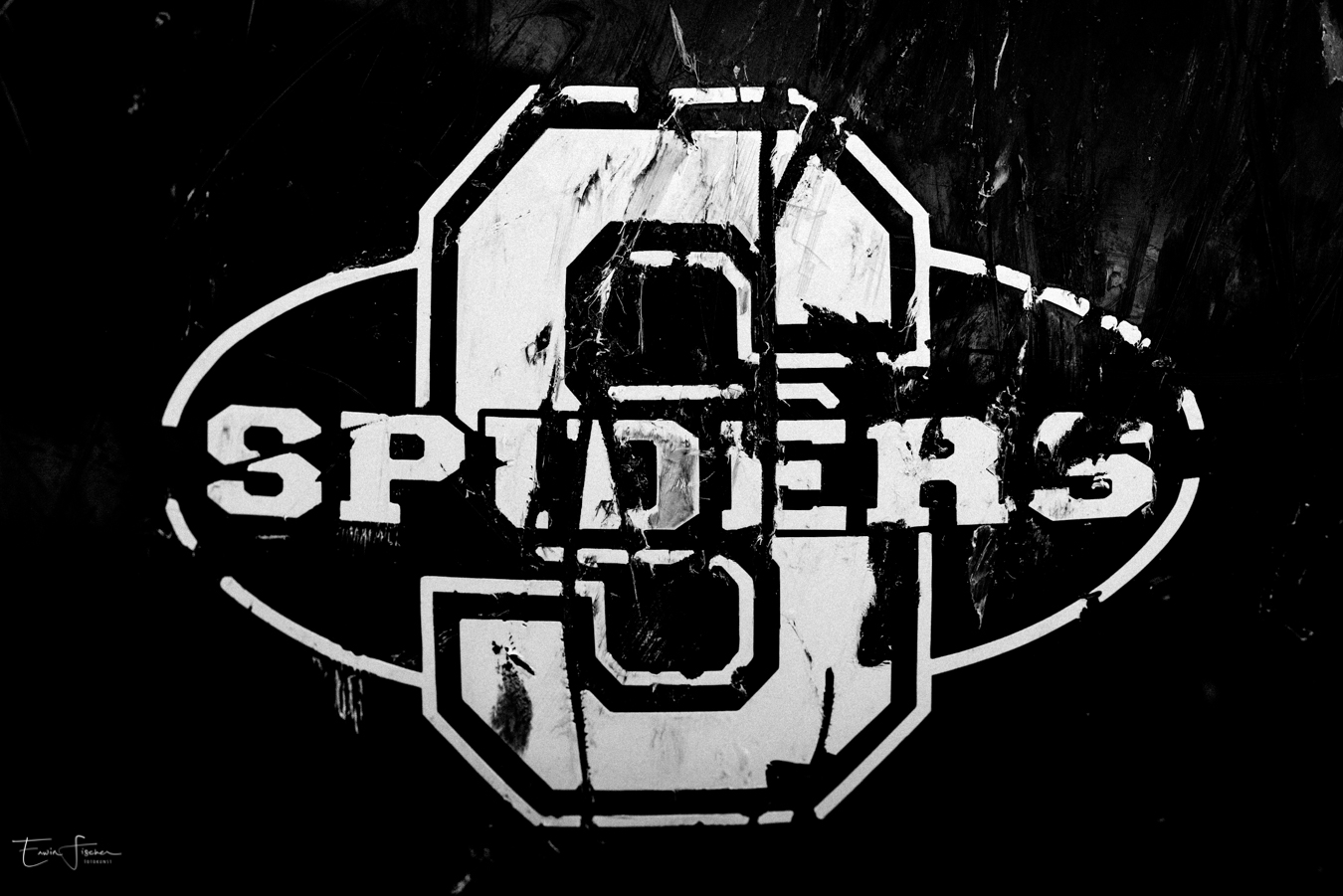 Straubing Spiders – Road to Championship